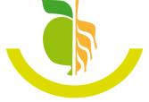 Ernährungstherapie und Gesundheitsmanagement Silke Lorenz-Gürtler